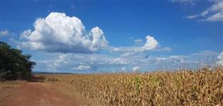 Fazenda c/ 2.288,64 hectares