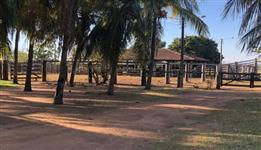 Fazenda 786 hectares em Nova Crixás/GO
