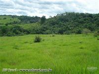 Fazenda de 438,1719 ha no Pará
