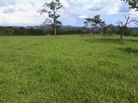 Fazenda 1418 ha Goiás