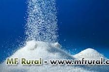 Açúcar para mercado interno ou exportação, IC 45, 150, 250 ate 300