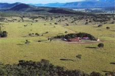 :: FAZENDA PLANA (360 ha) A 70 KM DE FORMOSA - GO