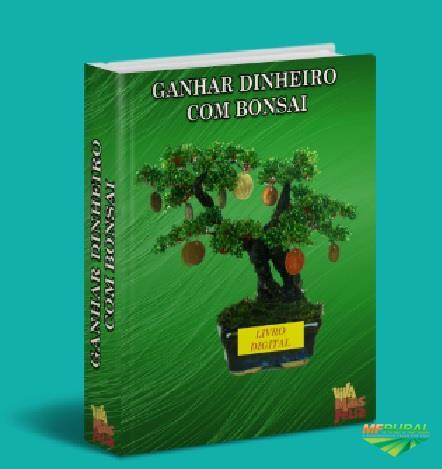 GANHAR DINHEIRO COM MUDAS PLANTAS BONSAI