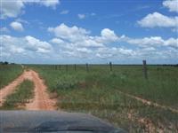 Fazenda em São José do Xingu - MT