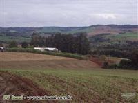 Linda fazenda no norte gaucho