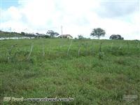 Fazenda Localizada no Município de Sátiro Dias/BA.