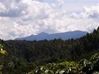 Terreno em Vargem Alta ES - Alto Castelinho 5,5ha