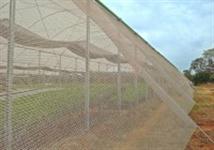 Tela Alface/ Tela FreshNet  e Telas Agrícolas 35% 50% 65% 80%
