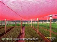 Telas Vermelha 35% 50%/  Telas Sombrite - Agrícola 35% 50% 65% 70% 80%