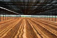 Tela Agrícola Sombrite 80%