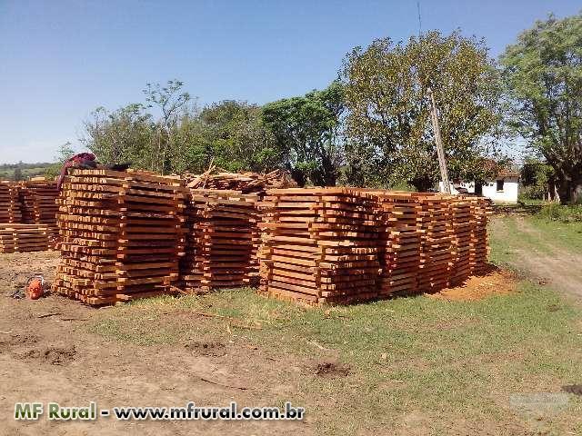 desdobro madeiras em sua propriedade