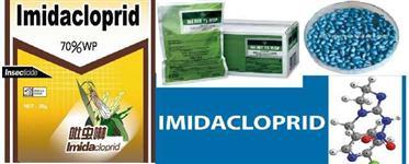 Imidacloprid 70% WG TRATAMENTO DE SEMENTES