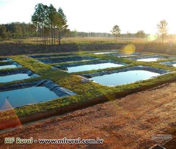 Geomembrana para revestimentos de tanques e reservat rios for Manual de piscicultura tilapia