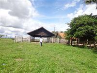 Fazenda de 224 alqueires com 214 formado em Seringueiras Rondônia