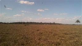 Fazenda em Rondônia de 130 alqueires