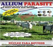 Allium Parasitt 10kg