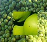 Cultivamos e produzimos e entregamos em todo País coco verde