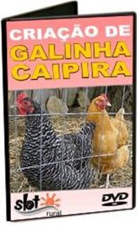 AG30 - Criação de Galinha Caipira - DVD