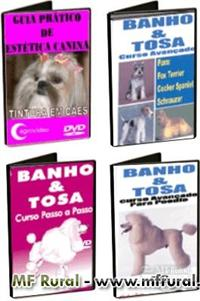 Kit - Cursos em DVD - Banho & Tosa e Estética Canina
