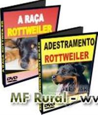 KT12 - Kit Rottweiler - A Raça e Adestramento - DVD