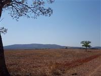 Fazenda Pedro Pereira
