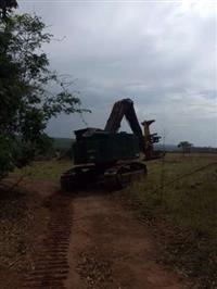 Alugo Feller Buncher Corte Florestal - Colheita Mecanizada