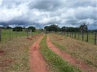 Sítio Vale das Nascentes | ótima propriedade com abundância de água