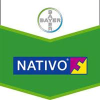 Nativo Bayer