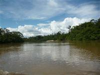 Fazenda em Roraima R$ 500,00/ha