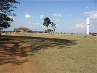 arrendamento de fazenda 1.100 ha com sede e galpao curral