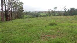 Fazenda para gado com 800 ha