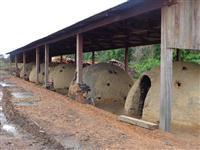 Carvão vegetal 100% legalizado de madeiras nativas