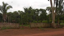 Fazenda para reserva legal no Piauí
