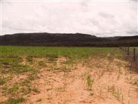 Sítio em Queimados - RJ com 30.000 m².