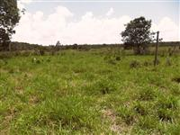 Sitio de 30 hectares a venda em Campo Verde MT