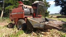 mf 3640 1988 plataforma milho