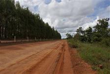 Fazenda em João Pinheiro/MG Ótima Oportunidade