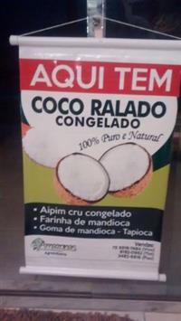 COCO RALADO CONGELADO
