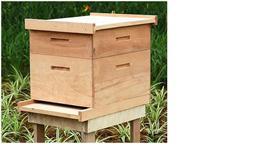 Caixas para abelhas