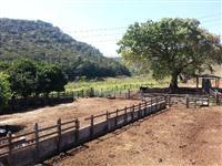 Fazenda próxima a Santos Dumont-MG, 63 alqueires
