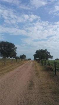 Fazenda em Conceição