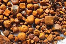 Pedra de fel