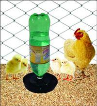 Bebedouro Água Ecológico