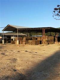 Estrutura de Serraria, Estufas, Galpões, Cabine Primária, Arrendamento, Locação