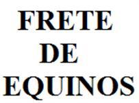 TRANSPORTE DE EQUINOS - VALE DO PARAÍBA E INTERIOR DE SÃO PAULO