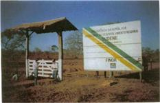 Soja: oportunidade na nova fronteira onde iniciou se a producao de soja