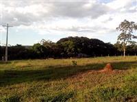 Chácaras com mais de 3700 metros, as margens do Rio Abeté, Três Marias MG