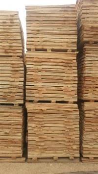 Ripas de eucalipto para paletes