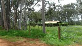Belissima fazenda tupaciguara 300 alqueres