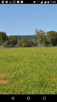 Belíssima fazenda _ Tupaciguara 121 alqueres